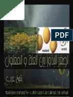 أصغر البذور بين العلة والمعلول تفنيدا للرد على بحث أصغر البذور وأكبر الأشجار