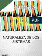 archivos de pdf (1).pdf