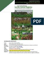 OfertadecursoP.A.O.Oct.2014.pdf