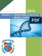 11 - Transformaciones en El Mundo Contemporaneo Resumen de La Materia
