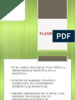 PLASMALEMA.pptx