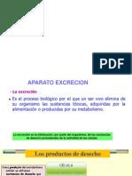 A. Excretor