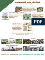 layout trabalho da rebeka.pdf