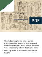 Hipofiza.ppsx