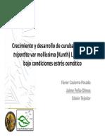 biblioteca_145_Crecimiento_curuba.pdf