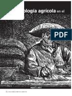 Recursos Naturales, Articulo, Biotecnologia agricola en el mundo en desarrollo..pdf