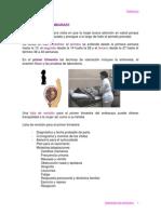 valoracion_embarazo.PDF