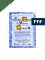 ESTUDIOS BASICOS DE DERECHOS HUMANOS - TOMO II.pdf