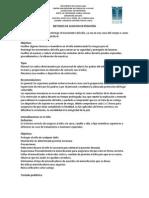 METODOS DE SUJECION EN PEDIATRÍA.docx