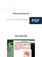 Neuroanatomia[1].pptx