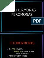 180400583-Fi-to-Hormonas.pdf