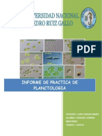 PRACTICA Nº 01.docx LIMNO.docx