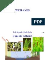 Wetlands.ppt