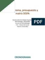 2012 Cronograma, presupuesto DOFA.pptx