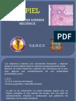 Patologia de Piel 2013.pdf