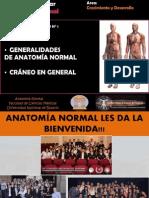 SEMINARIO N°1. GENERALIDADES Y CRÁNEO 1. 2014.ppt