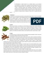 plantas medicinales info.docx