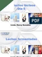 Clase productos fermentados.pptx