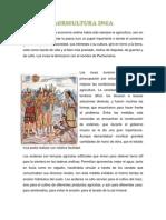 AGRICULTURA INCA.docx