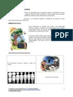 DIMENSIONES DEL SER HUMANO.doc