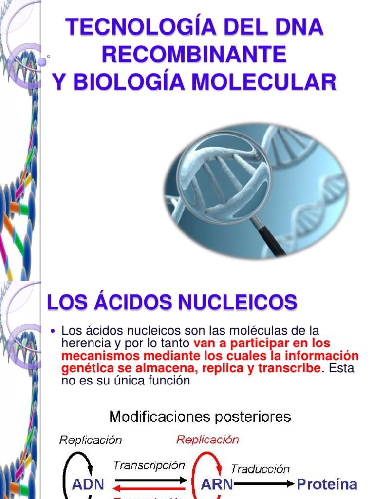 TECNOLOGÍA DEL DNA RECOMBINANTE BILOGIA MOLECULAR.pdf