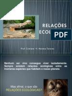 APRESENTACAO RELACOES ECOLOGICAS.pdf