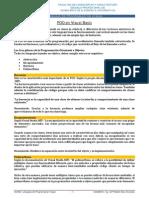 LPV - POO.pdf