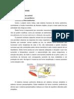 SISTEMA NERVOSO.docx