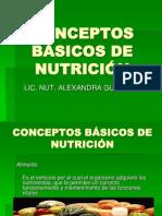 conceptos_basicos_de_nutricion.ppt