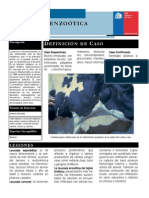 f_tecnica_leucosis_enzootica.pdf