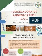 BPM PROCEALPERSAC.pptx