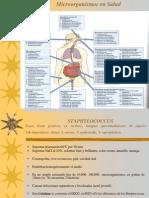 OK(13)MICRORGANISMOS Y SALUD.pdf