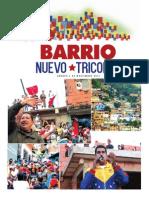 BARRIONUEVOTRICOLOR-1.pdf