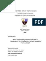 pymes (2).pdf