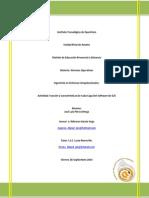 SO_U4_PIN_Actividad1_Capas.docx