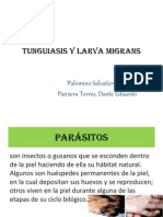 Tunguiasis y Larva migran FINALL.ppt