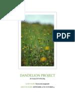 Dandelion Project
