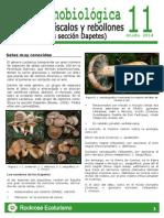 Rockrose-Hoja etnobiologica 11 Lactarius.pdf