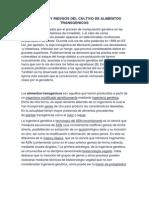 BENEFICIOS Y RIESGOS DEL CULTIVO DE ALIMENTOS TRANSGENICOS.pdf