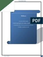 Rapport POI.docx