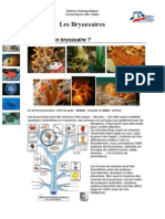 cours-biologie-marine-bryozoaires-ligne.pdf