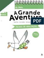 A Grande Aventura 1º- Fichas de Avaliação - Estudo Do Meio