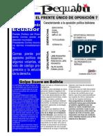 pequebu 2 2014.pdf