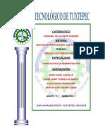 CAPITAL HUMANO II.docx