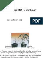 Teknologi DNA Rekombinan (STFB)