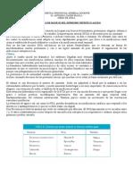 Protocolo Nefritis.doc