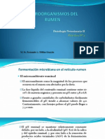 6 Microorganismos del rumen_2014_Práctica N°11.pptx