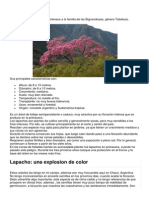 El Lapacho.docx