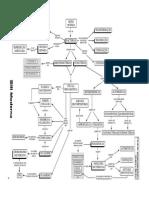 mapas036 Bactérias.pdf