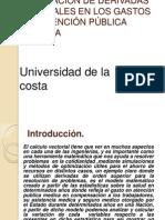 proyecto de calculo.pptx